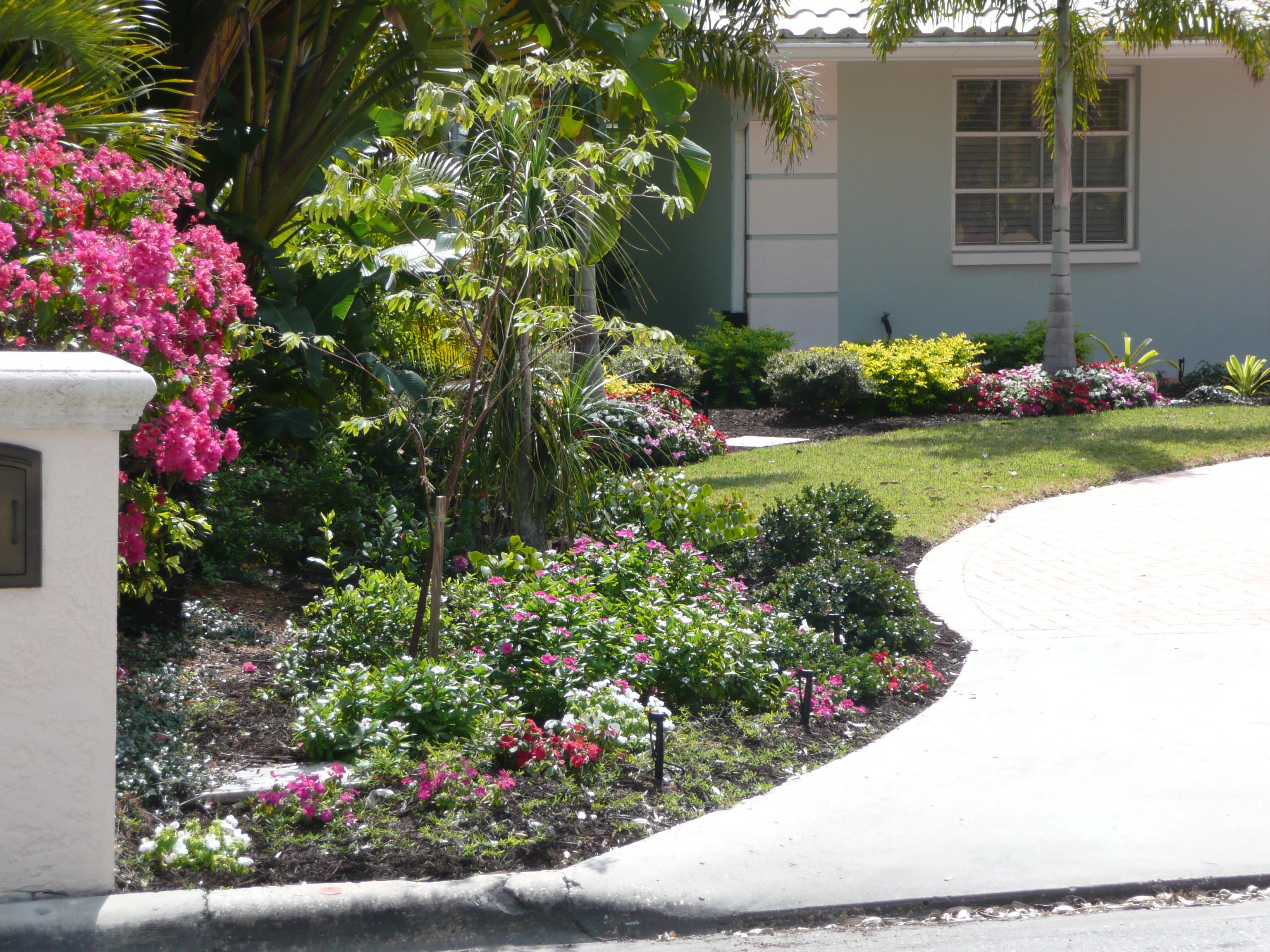 C clawns llc work gallery for No maintenance garden designs